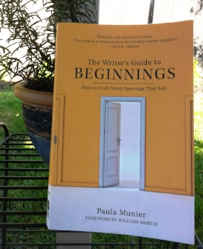 writersguidetobeginnings-cindyfazzipic