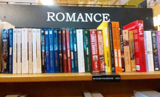 RomanceBooks-CindyFazziPic