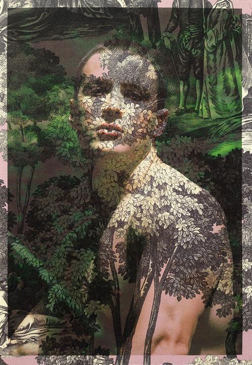 Hailand_Dan+Jalba+Face+and+Torso+Vienna_on+purple+and+grey+tree+toile.jpg