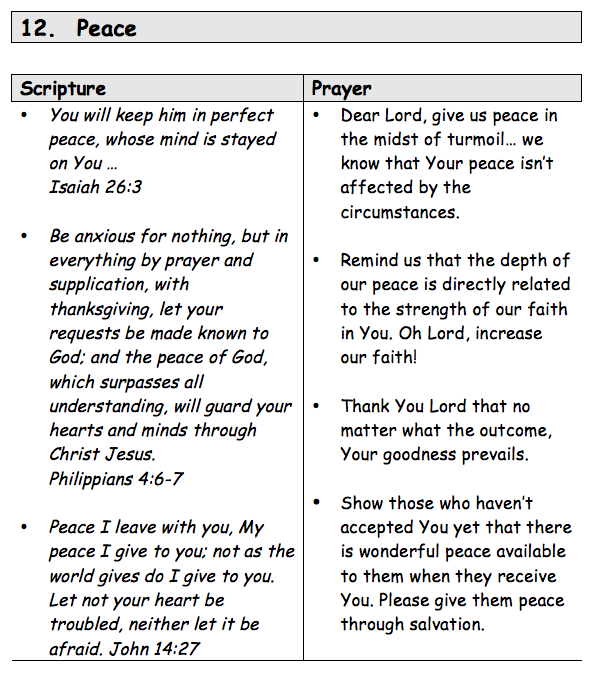 FOCUSED PRAYER SAMPLE PAGE copy.png