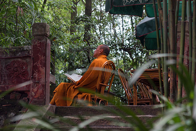 Monk Contemplating