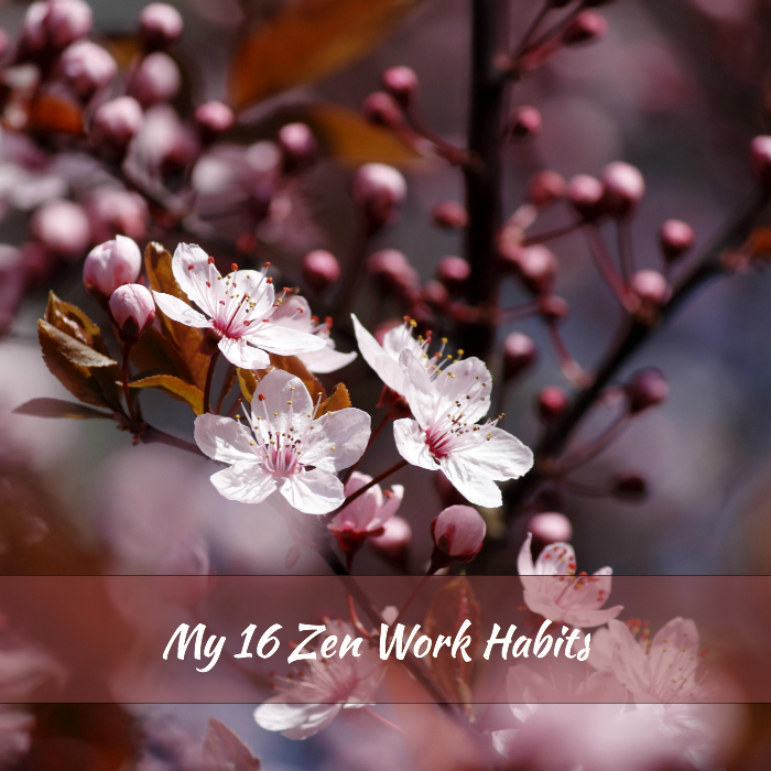Plum Blossoms - Zen Work Habits