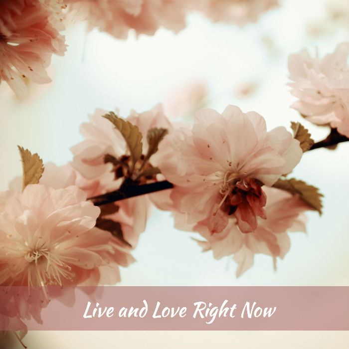 Live and Love Right Now (Sakura)