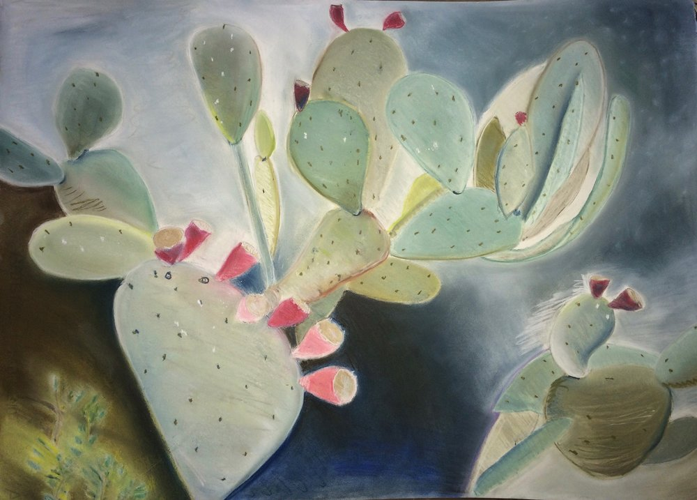Pastel on paper  30 by 20 inches  2016
