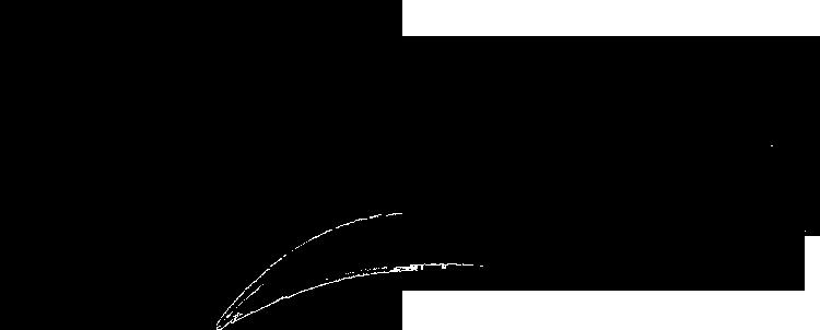 inkyfox logo black