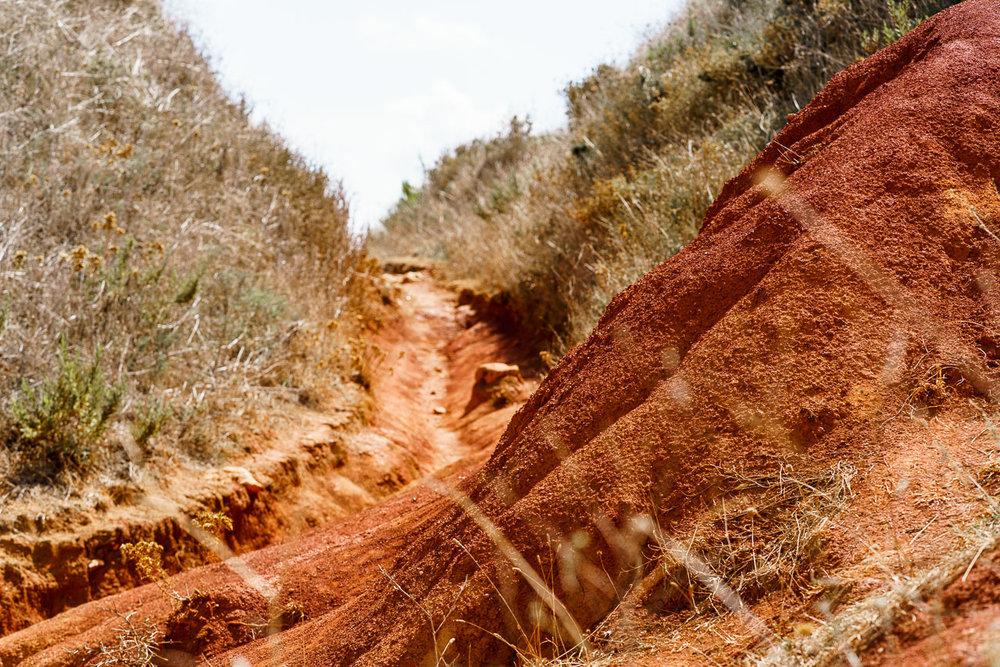 Punta Palacia BeeYond Travel - 19.jpg