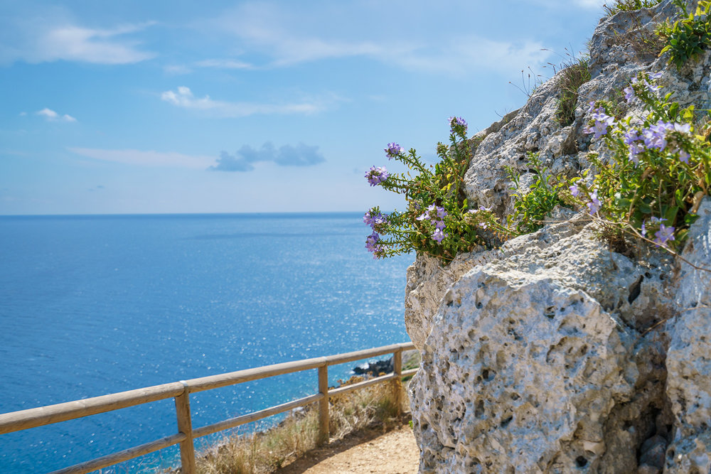 Punta Palacia BeeYond Travel - 4.jpg