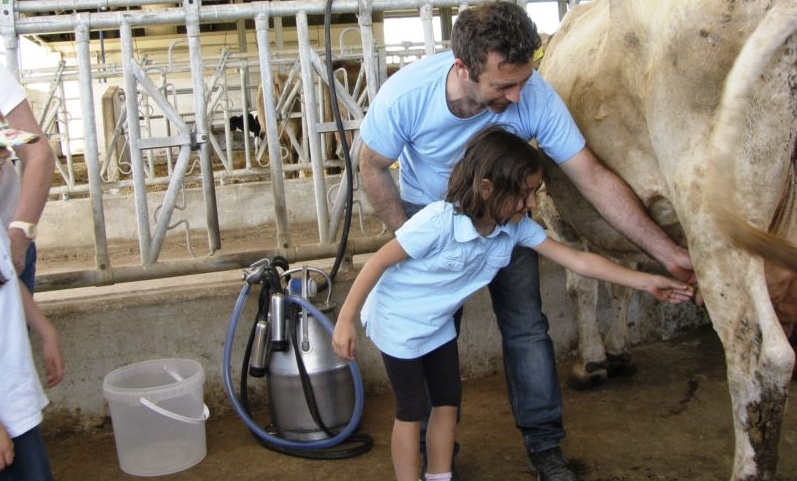 Kids Milking Cow.jpeg