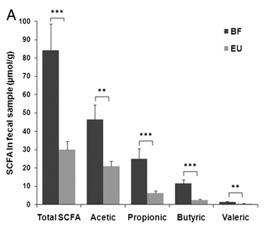 Higher levels of Short-Chain Fatty Acids in African Villagers (BF) [4]
