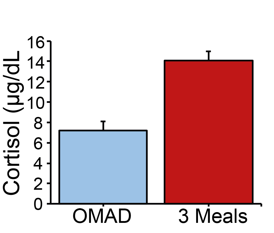 OMAD reduces cortisol. [modified after Reference 5]