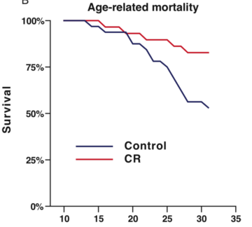 Mortality of monkeys on calorie restricted (CR) diet [1]