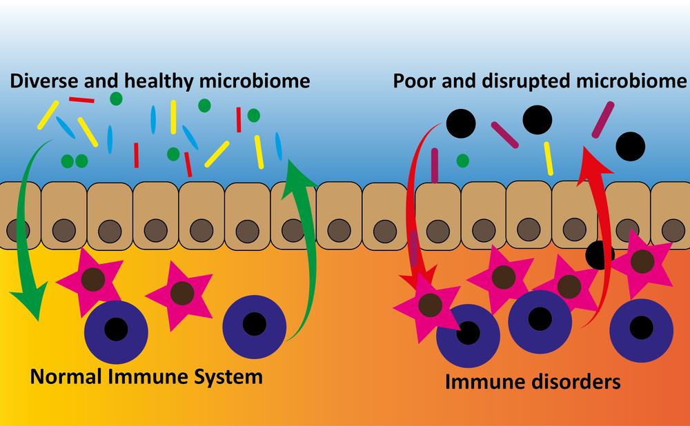 Logo immune system.png
