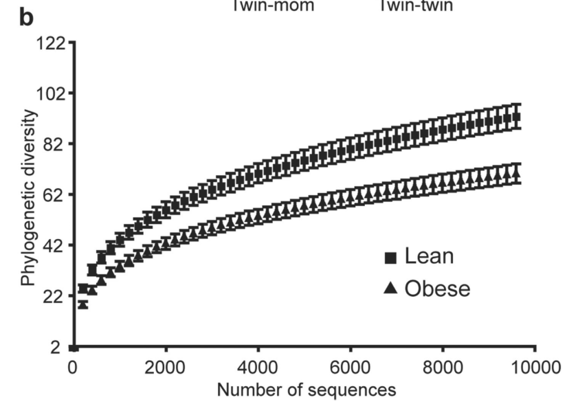 Obese people have a less diverse microbiome [9]