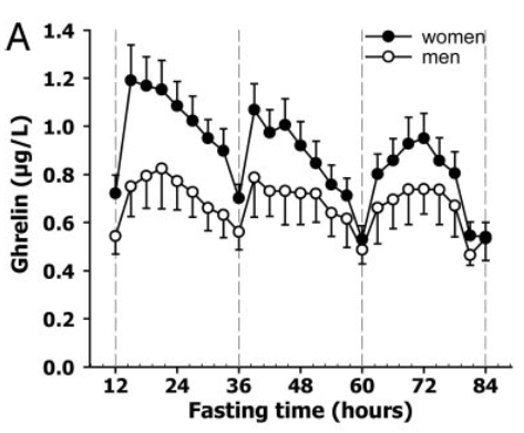 Blood ghrelin levels during a 84 hours fast [1]