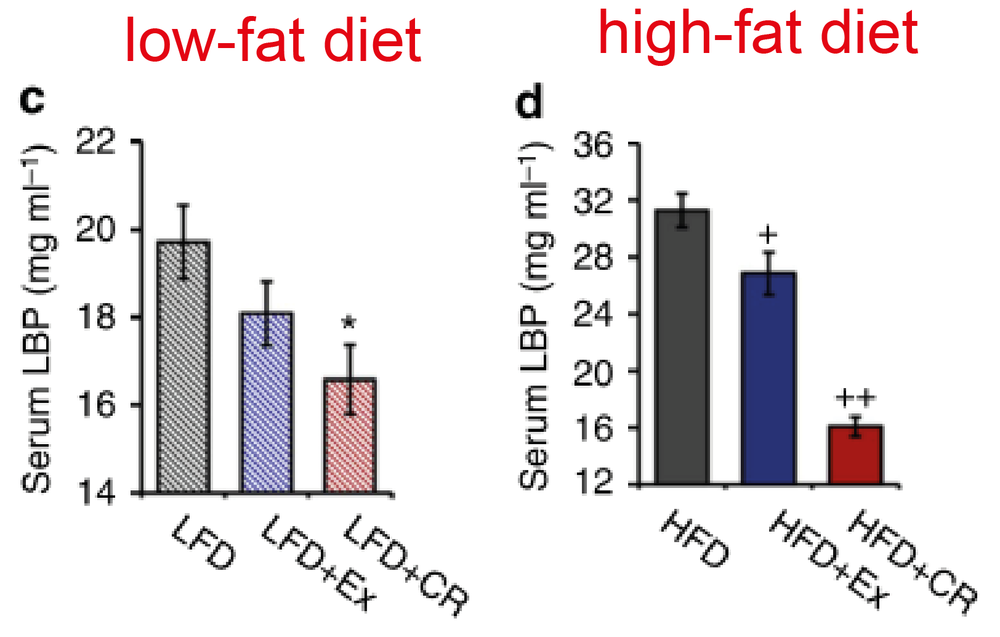 Calorie-restriction (CR) lowers blood endotoxin levels (LBP) in high-fat (HFD) and low-fat (LFD) diets more efficient than exercise (Ex) [2]