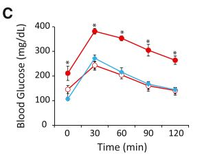 zarrinpar_glucose levels.JPG