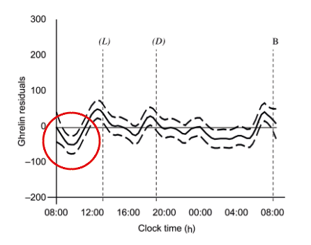 Ghrelin levels throughout a 24 hours fast