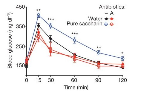 Glucose intolerance was reduced in mice treated with antibiotics [Figure 1D]