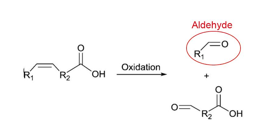 fatty acid oxidation + aldehyde.JPG