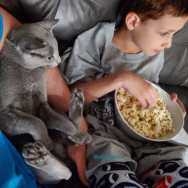 Friday goals... #Repost @aslantheblue ・・・ Movie night