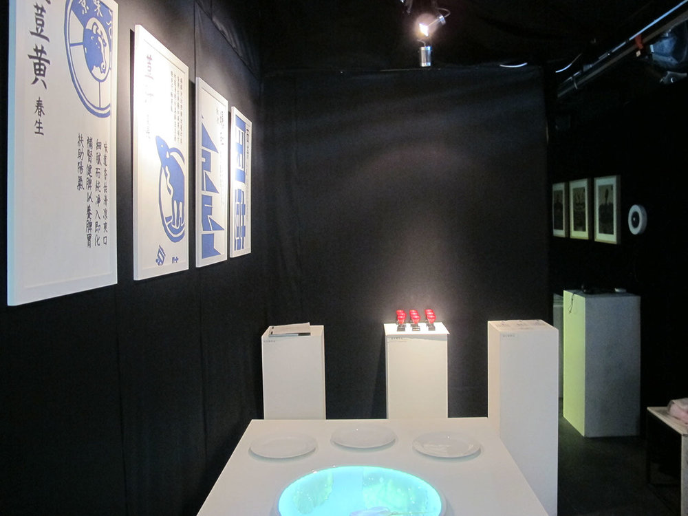 Project exhibited in 2012 Thesis Exhibition in China Central Academy of Fine Arts/Beijing/Jun 2012