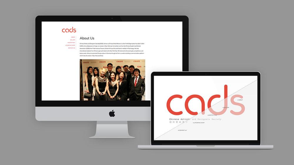 cadswebsite1.jpg