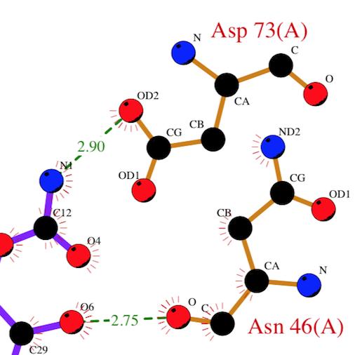 hydrogen_bond-thumbnail.png