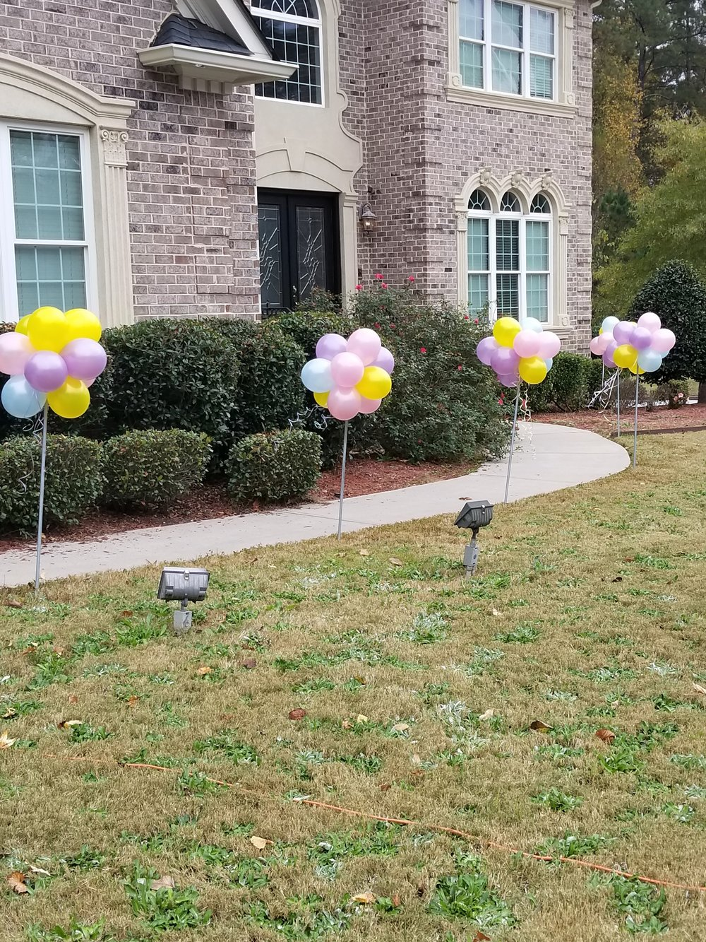 Topiary balloon walkway.jpg