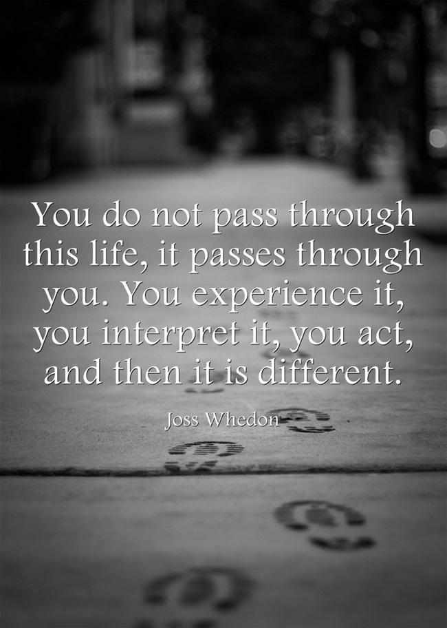 You Do Not Pass Through This Life