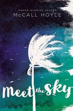 cover-meet-the-sky.jpeg