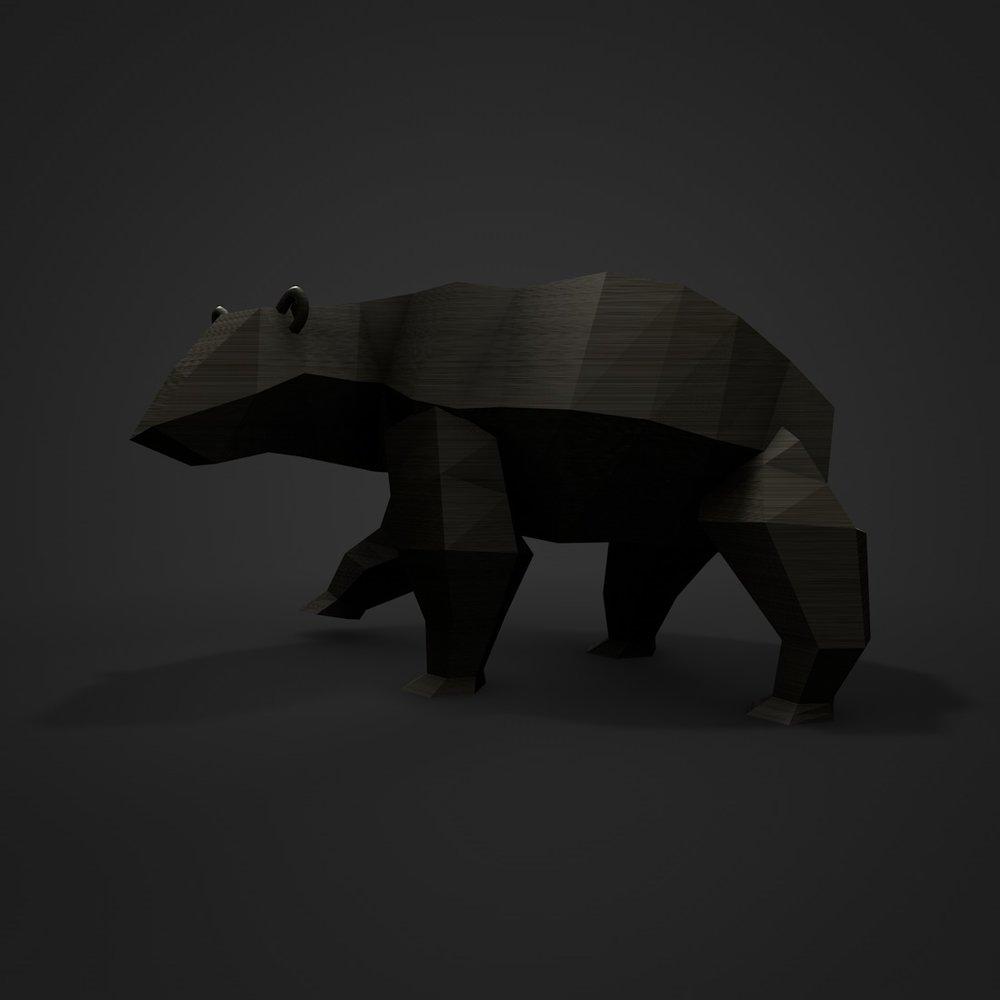 bear.jpg