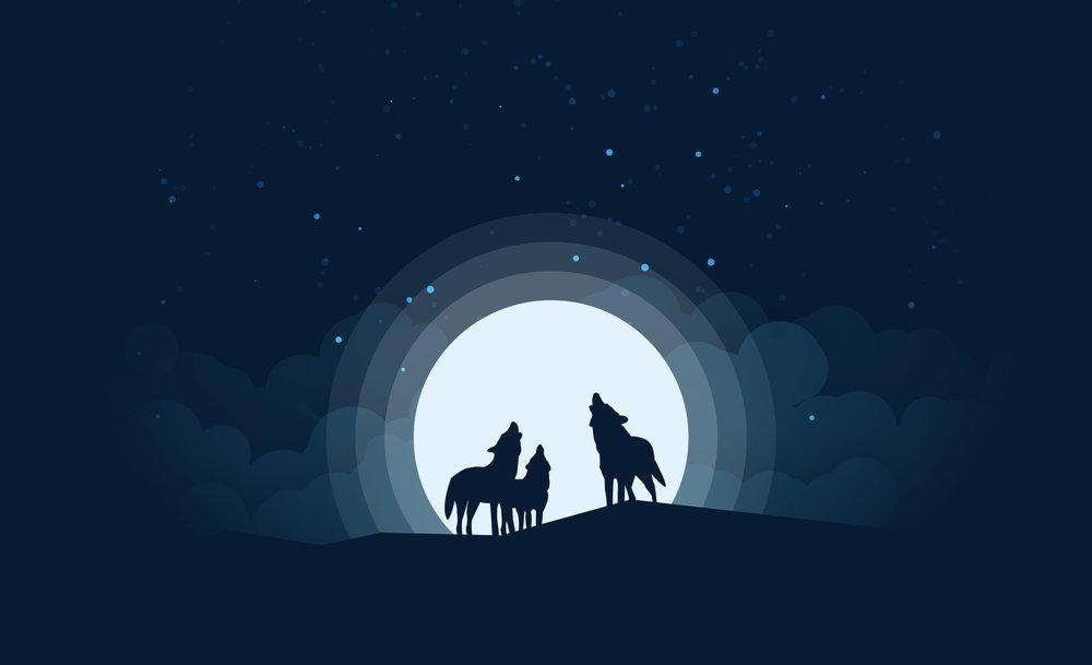 wolves at night-01.jpg