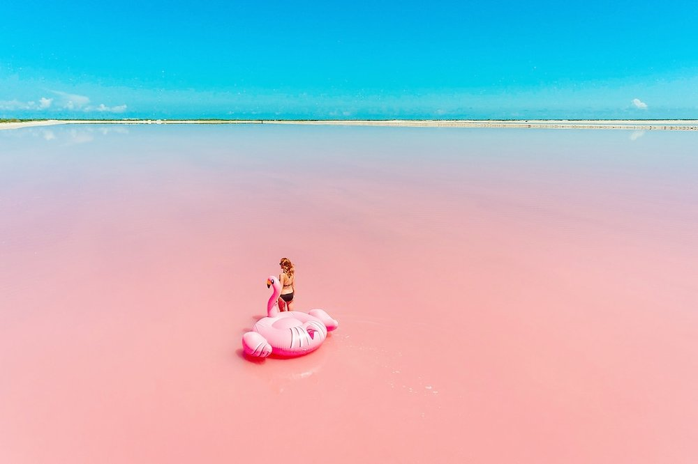 las-coloradas-flamingo-XL.jpg