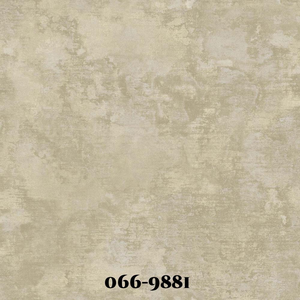 0669881.jpg