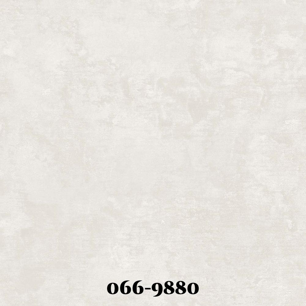 0669880.jpg