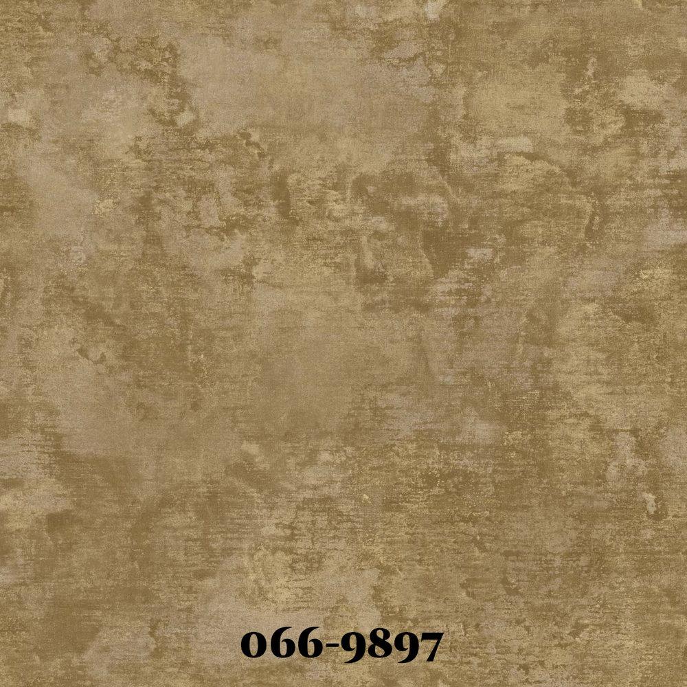 0669897.jpg