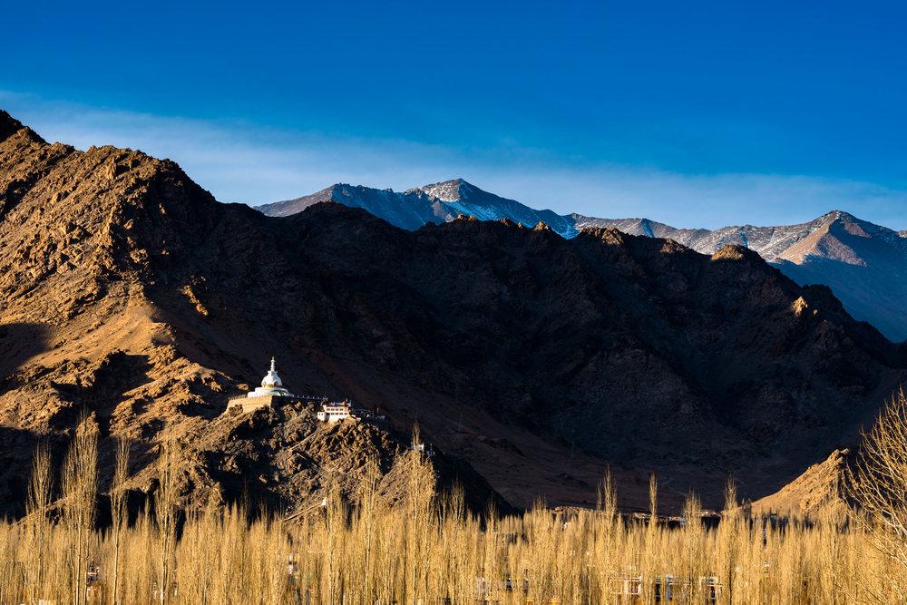 Shanti Stupain Leh