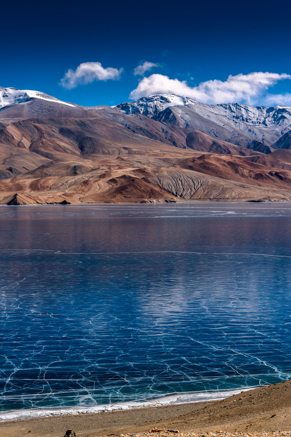 Lake Tso Morriri from the Vantage Point