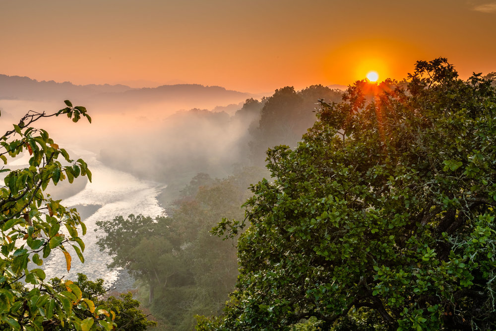 Sunrise from machan in Jim Corbett National Park