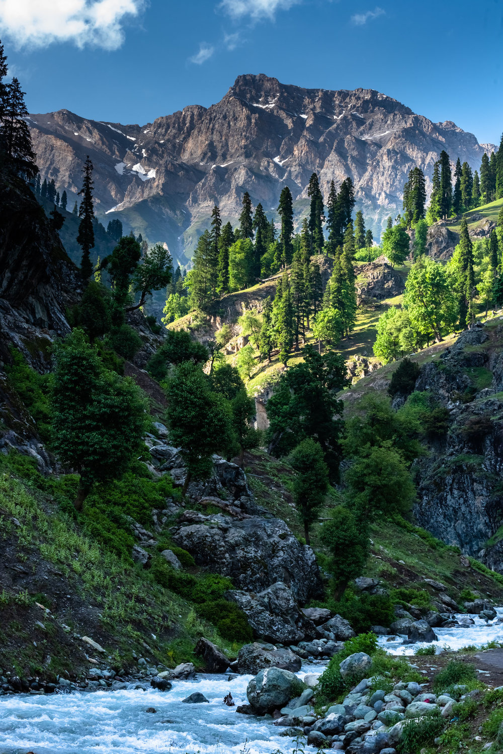 Scenic Meadows at Aru Valley in Pahalgam