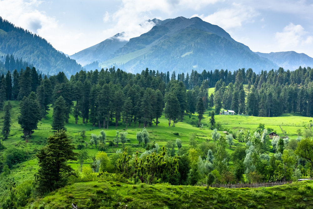 Scenic Village at Aru Valley in Pahalgam