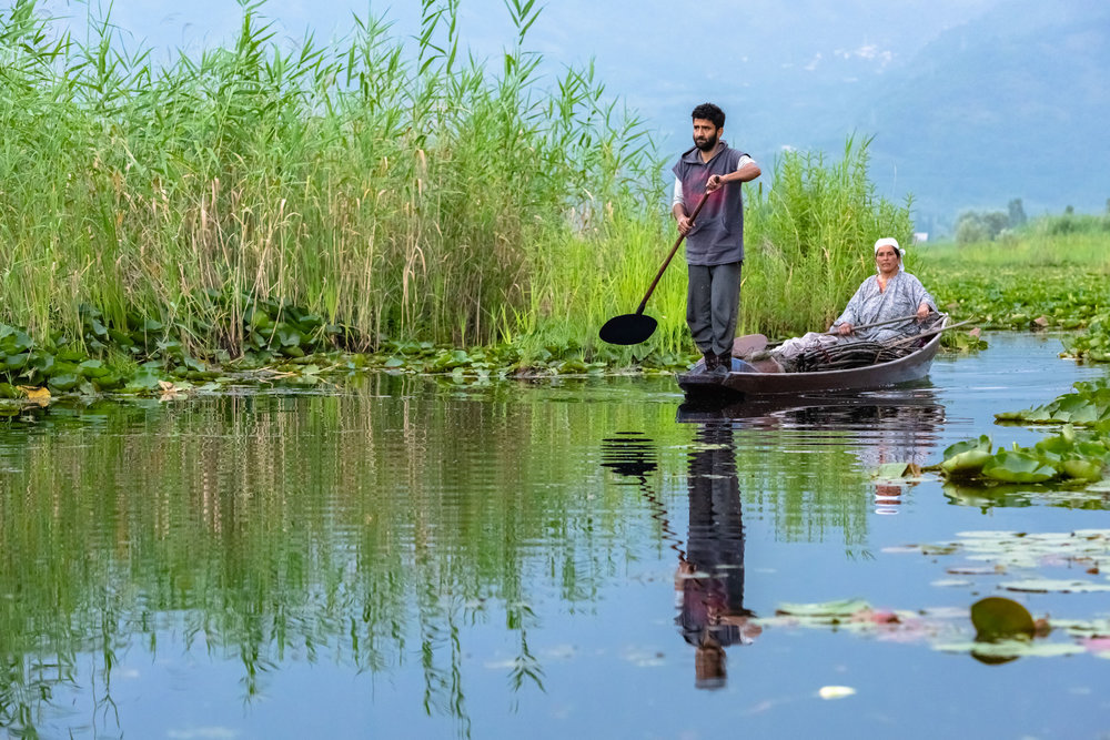 Fisherman placing nets in Dal Lake