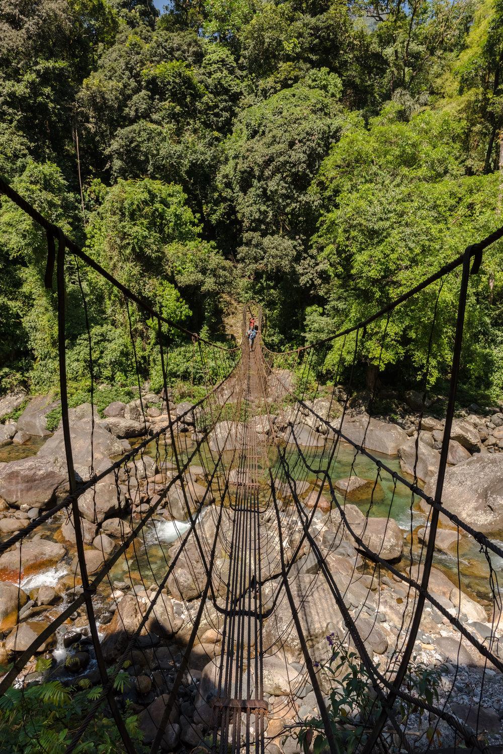 Double Root Bridge Journey 3.jpg