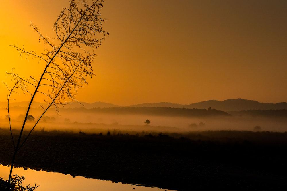 Sunrise with fog on river bank of Ramganga