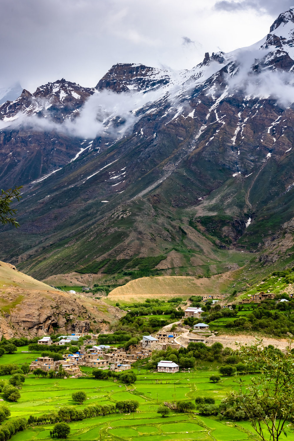 Tongul Village in Suru Valley