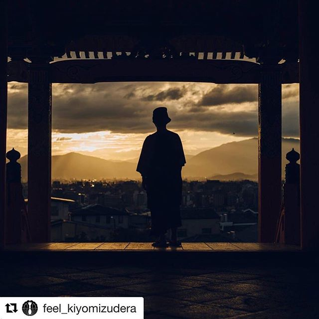 "#Repost @feel_kiyomizudera with @get_repost ・・・ 清水寺「call; 音がきこえる」haruka nakamura 演奏会 YouTube LIVE配信のお知らせ  2018年10月16日(火)18:30〜20:00(予定) 奏者:haruka nakamura ゲスト:AOKI,hayato  開始時間より、公式YouTubeチャンネルで公開いたします。 official YouTube https://www.youtube.com/feelkiyomizudera/ - Pianist haruka nakamura's concert, ""call; you will hear the sound,"" presented by Kiyomizu-dera Temple will be live-streamed on YouTube. -  October 16 (Tue), 2018, 6:30 – 8:00 pm (Japan Time) Performer: haruka nakamura Guest: AOKI,hayato  The concert is scheduled to be live-streamed on the official YouTube channel of Kiyomizu-dera Temple. https://www.youtube.com/feelkiyomizudera/"