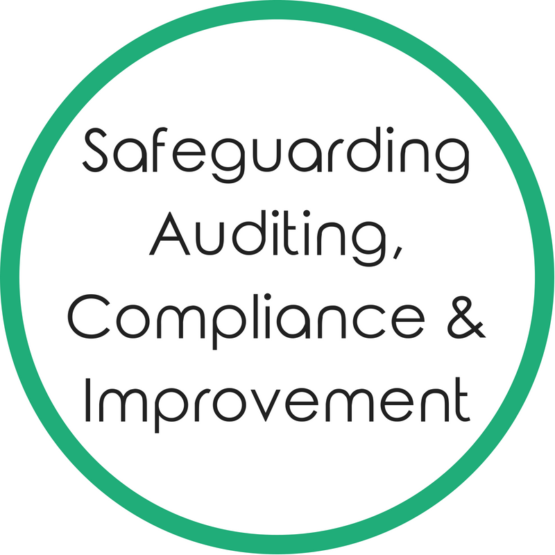 Safeguarding Auditing, Compliance and Impovement