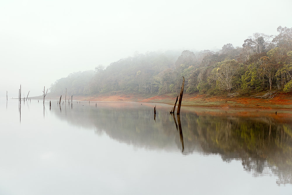 national_park_periyar_001.jpg