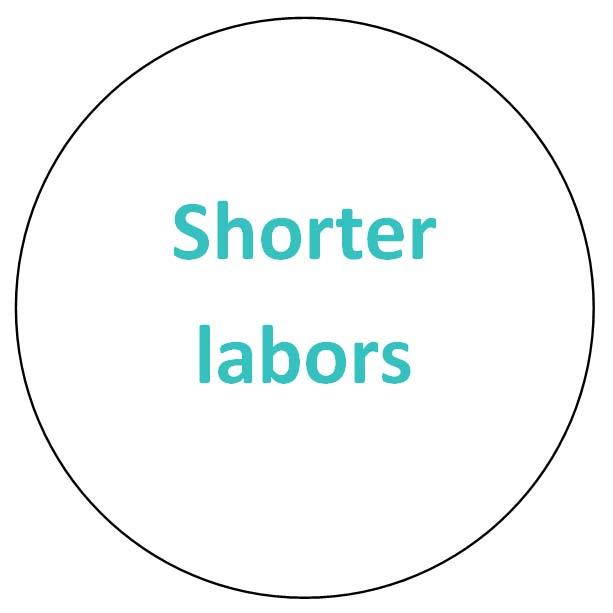 shorter labors.jpg