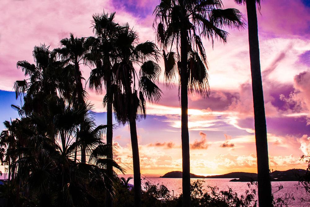 Take You To Paradise